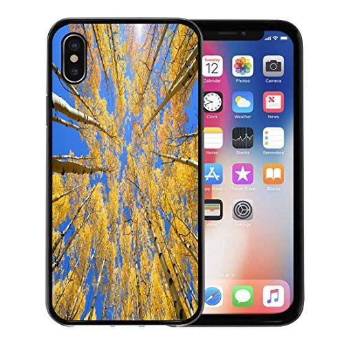 Semtomn Phone Case for Apple iPhone Xs case,Blue Mountain Abstract of Golden Aspen Tree in Snowmass Wilderness Area Colorado Orange America for iPhone X Case,Rubber Border Protective Case,Black