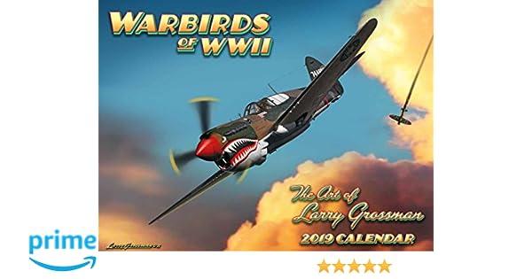 World War II Warbirds 2019 Calendar: Larry Grossman