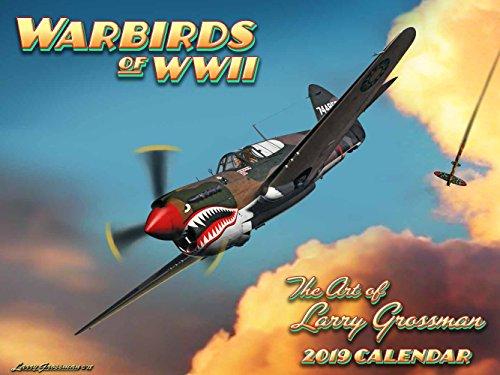 (World War II Warbirds 2019 Calendar)