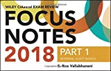 img - for Wiley CIAexcel Exam Review 2018 Focus Notes, Part 1: Internal Audit Basics (Wiley CIA Exam Review) book / textbook / text book