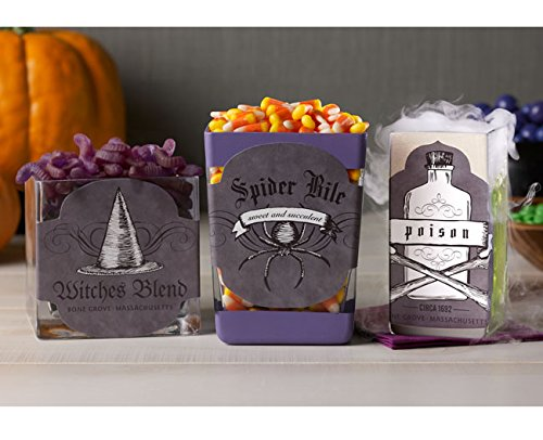 [Martha Stewart Crafts - BOTTLES HALLOWEEN Labels & Phrases EYE OF NEWT SPIDER, WITCH, FROG Decoupage Paper Cut-Outs 12] (Witch Cutouts)