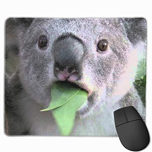 Smooth Mouse Pad Funny Koala Bears Mobile Gaming