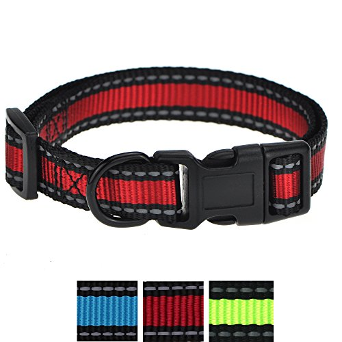 Mile High Life Night Reflective Nylon Dog Collar (Small, Red/Black) (Red Dog Nylon Collar)