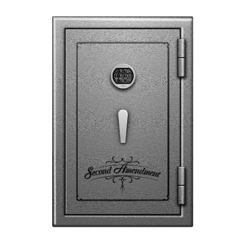Blue Dot Safes Second Amendment Fire-Resistant Gun Safe, 30x20x20-Inch