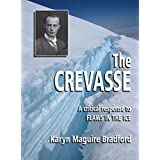 """The Crevasse: A Critical Response to """"Flaws In The Ice"""""""