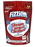 Fizzion Clean Steam Cleaner (20 Tablets) – Steam Cleaner Tablets Carpet Stain Remover, Odor Neutralizer & Upholstery Cleaner Makes 10 Gallons For Sale