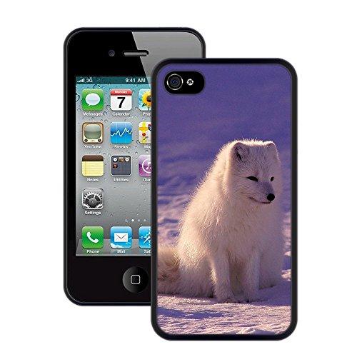 Samojeden im Schnee | Handgefertigt | iPhone 4 4s | Schwarze Hülle