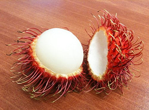 Fresh Rambutan Fruit (5lb) by Ecoripe Tropicals (Image #3)