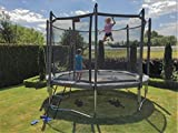 Pro-Line 14 ft Round Trampoline with Enclosure and Ladder