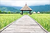 Posterlounge Alu Dibond 150 x 100 cm: hut in Green rice field by Editors Choice
