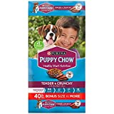 Purina Puppy Chow Tender & Crunchy Dry Dog Food (40 lb.) Larger Image
