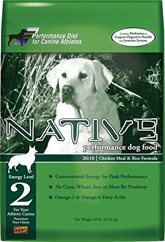 Cheap Native Performance Dog Food Level 2 26:16 Chicken Meal And Rice Formula, 40-Pound