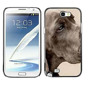 YiPhone /// Prima de resorte delgada de la cubierta del caso de Shell Armor - Great Dane Large Dog Grey Pet - Samsung Galaxy Note 2 N7100