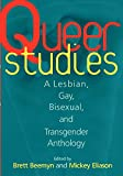 img - for Queer Studies: A Lesbian, Gay, Bisexual, and Transgender Anthology book / textbook / text book