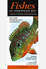 Fishes of Chesapeake Bay: A Guide to Freshwater & Saltwater Species (Quick Reference Guides) Pamphlet