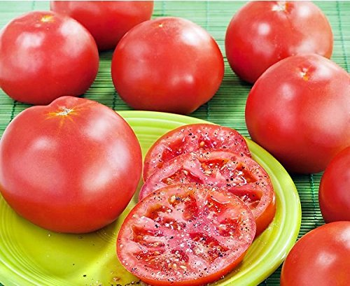 - 50+ ORGANICALLY GROWN Marglobe Tomato Seeds, Heirloom NON-GMO, Determinate, Open-Pollinated, Meaty, Delicious, Heavy Producer, The quality is extra fine! From USA