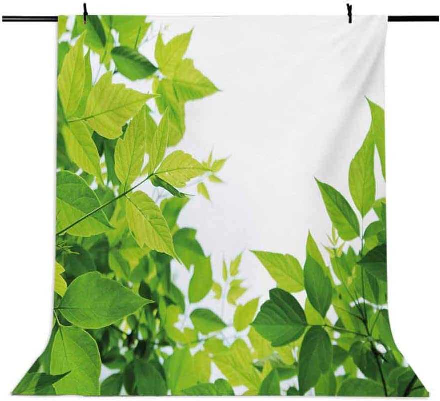 Plant 10x12 FT Backdrop Photographers,Beautiful Photo of Fresh Leaves Spring Season Birth of Nature Happiness Ecology Background for Party Home Decor Outdoorsy Theme Vinyl Shoot Props Green