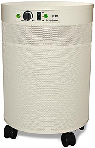 Airpura Industries C600 Air Purifier Designed for Chemical -