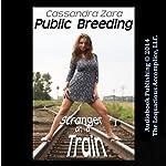Fun in Public: Stranger on a Train | Cassandra Zara