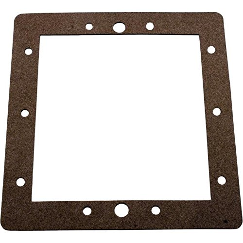 - Pentair R172471 Front Face Plate Gasket
