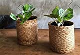 2 pcs of Natural basket / plants basket / stationary basket , good to be plant pot , stationary pot , home decoration , keep woman stuffs , a candy gift basket ,artificial flower basket