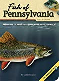 Fish of Pennsylvania Field Guide (Fish Identification for sale  Delivered anywhere in USA
