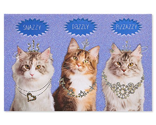 Card Greeting Cat Birthday (American Greetings Funny Cats Birthday Card with Glitter)