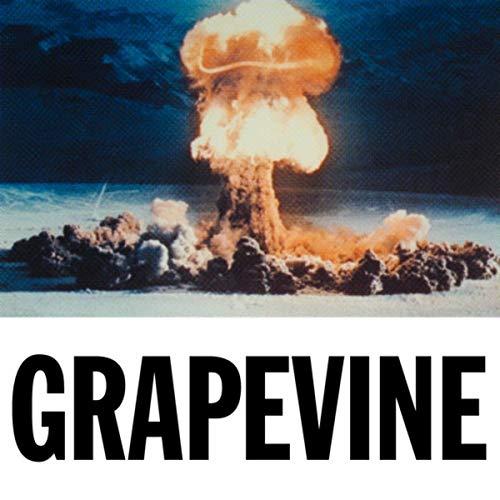 Grapevine (Tiesto Mp3)