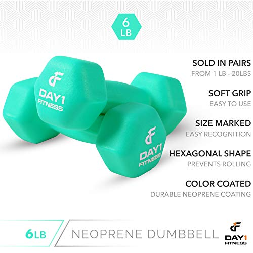 Neoprene Dumbbell Pairs by Day 1 Fitness - 6 Pounds - Non-Slip, Hexagon Shape, Color Coded, Easy To Read Hand Weights for Muscle Toning, Strength Building, Weight Loss