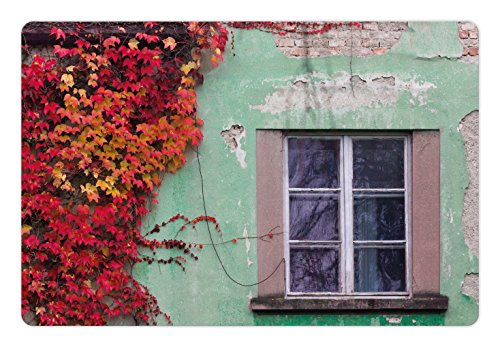 Ambesonne Autumn Pet Mat for Food and Water, Fall Ivy on Old House Walls Left Countryside Mansion Vintage Architecture Design, Rectangle Non-Slip Rubber Mat for Dogs and Cats, Red Mint Green