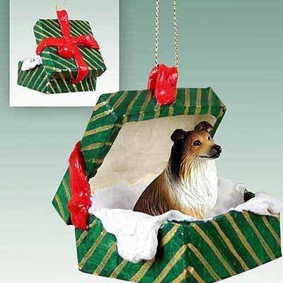 Conversation Concepts Collie Sable Gift Box Green Ornament by Conversation Concepts ()