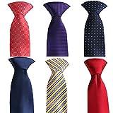Mens Fashion Business Necktie Tie Mixed Set 6 Pack (set 33)