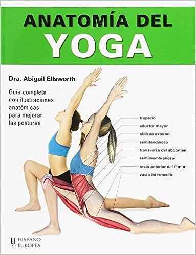 Anatomía del yoga: Abigail Ellsworth: 9788425521201: Amazon ...