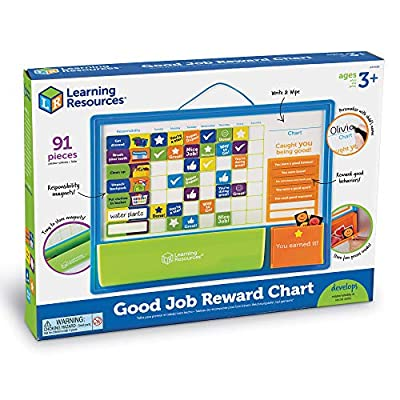 Learning Resources Good Job Reward Chart, Custom Magnetic Chore and Responsibility Chart for Kids, 91 Piece Set, Ages 3+: Toys & Games