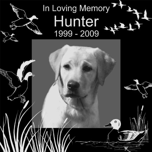 Personalized Pet Hunting Bird Gun Dog Memorial 12''x12'' Engraved Black Granite Grave Marker Head Stone Plaque HUN1 by Lazzari Collections