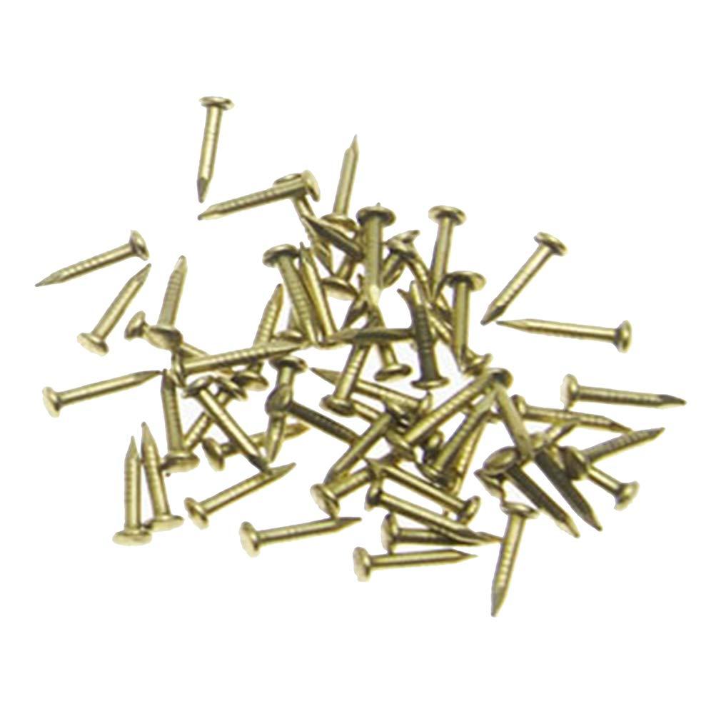 Rzdeal 200 pcs miniature Pointes Tê te ronde Laiton ongles pour charniè res Petite poupé e –  dé licat Boî tes Mini projets d'artisanat (DIY, 0,1 x 0,8 cm) 1x 0 8cm)