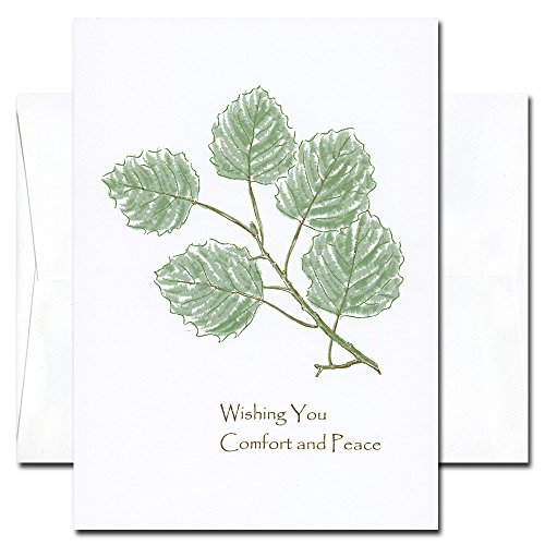 (Sympathy Cards: Comfort - box of 10 cards & env Made in USA by CroninCards)