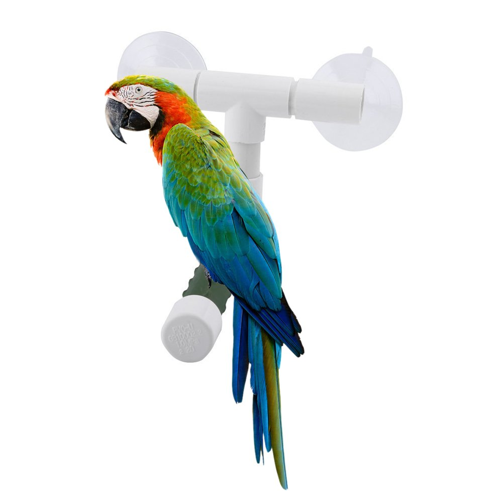 Yosoo Bird Parrot Perches Foldable Suction Cup Window Shower Bath Wall Paw Grinding Stand Toy For Parrot Budgies Cockatoo Parakeet Bath Perches Toy