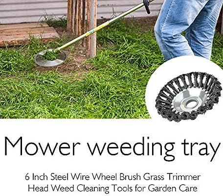 Corwar - Cabezal de cepillo de alambre de 6 pulgadas de acero para ...