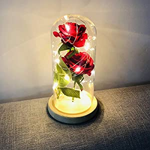 Warmmie Beauty and The Beast Preserved Fresh Rose Flower Light in a Glass Romantic Wooden Base Valentine's Day Birthday Anniversary 2