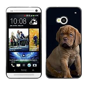 TopCaseStore / la caja del caucho duro de la cubierta de protección de la piel - Great Dane Vizsla Puppy Baby Dog - HTC One M7
