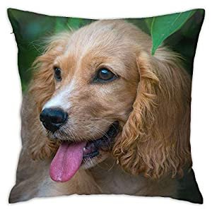 SXboxing Decorative Throw Pillow Covers 18x18 Inches,Christmas Square Throw Pillow Cases for Sofa Bedroom Car English Cocker Spaniel Puppy Dog Pretty 29