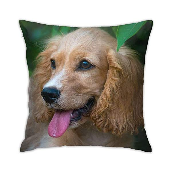 SXboxing Decorative Throw Pillow Covers 18x18 Inches,Christmas Square Throw Pillow Cases for Sofa Bedroom Car English Cocker Spaniel Puppy Dog Pretty 1