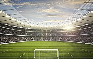 Marvelous Football Stadium Wall Mural Wallpaper MADE TO MEASURE Part 28