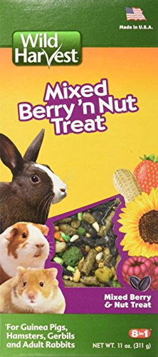 51ArZMUL5TL - Wild Harvest Wild Berry and Nut Treat for Small Animals