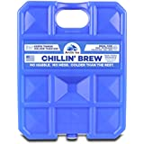 Arctic Ice Chillin Brew Series Reusable Cooler Pack, 5-Pound