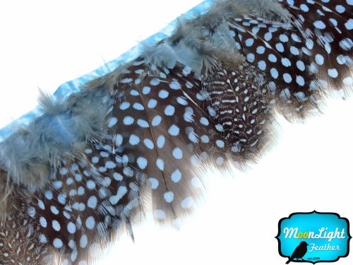 Moonlight Feather | 1 Yard - Baby Blue Guinea Hen Plumage Feather Trim Wholesale Supplier Costume, Craft, Halloween -