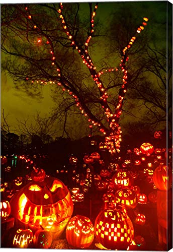 Jack o' Lanterns lit up at Night, Roger Williams Park Zoo, Providence, Rhode Island, USA Canvas Art Wall Picture, Gallery Wrap, 14 x 21 inches]()