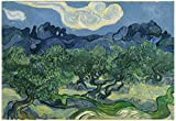 Vincent Van Gogh (The Olive Trees) Art Poster Print 19 x 13in