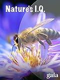 Nature's IQ